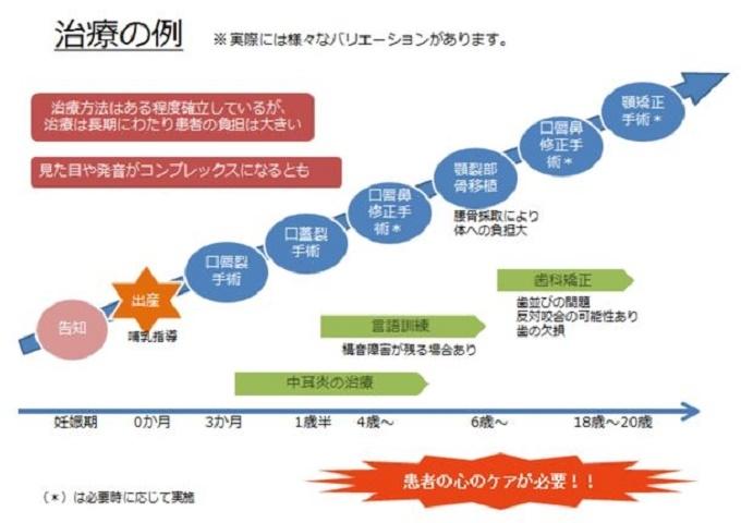 プロジェクト応援サイトで紹介されている成長過程で必要な治療の一例