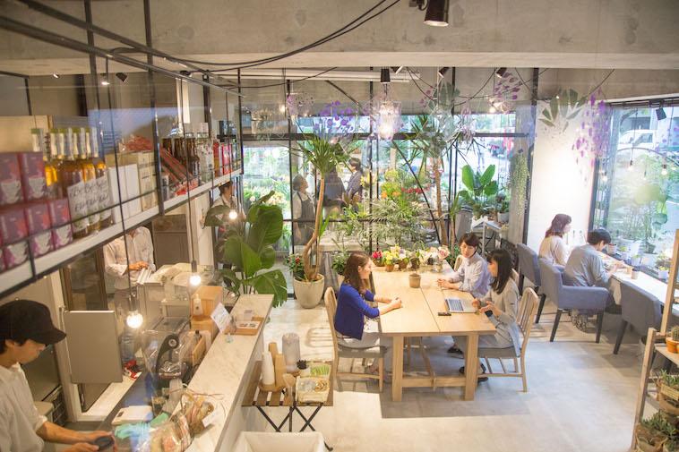 【写真】ガラス張りの店内には植物が飾られ、おしゃれで落ち着く雰囲気