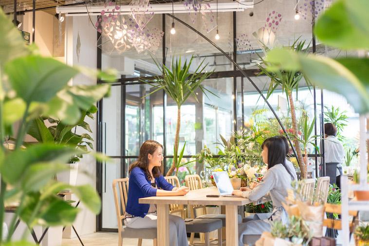 【写真】取材をしている店内には、植物が並び、とっても癒される空間