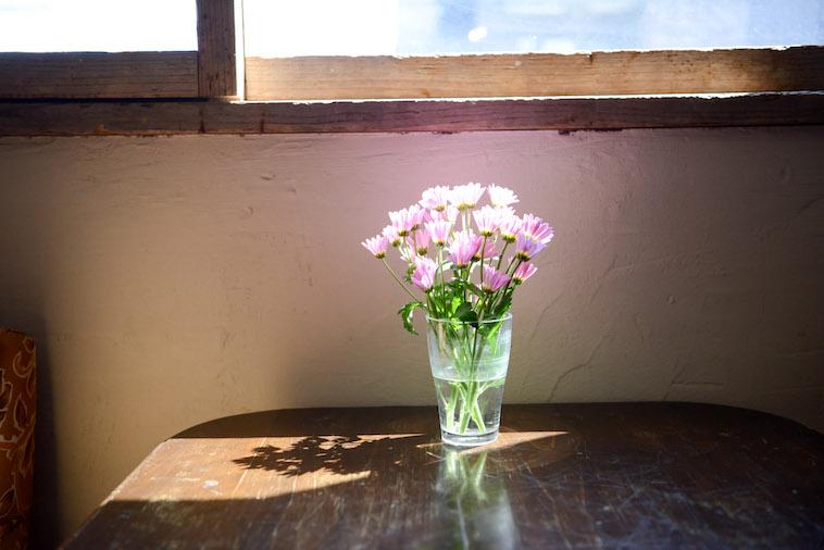 【写真】花瓶に飾られている小さな花が太陽の光を浴びて暖かい空気を作り出している