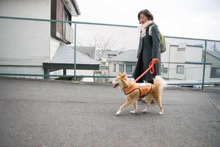 【写真】あずまさやかさんの横を歩くあみのすけ