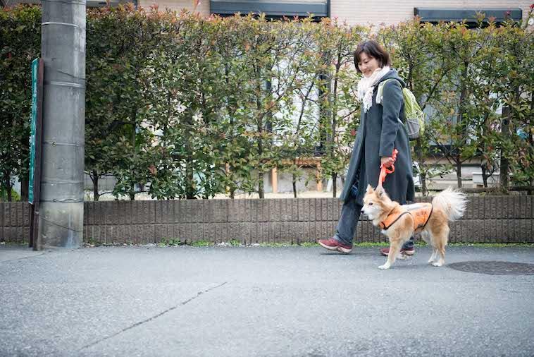 【写真】あずまさやかさんと一緒に道路を歩くあみのすけ