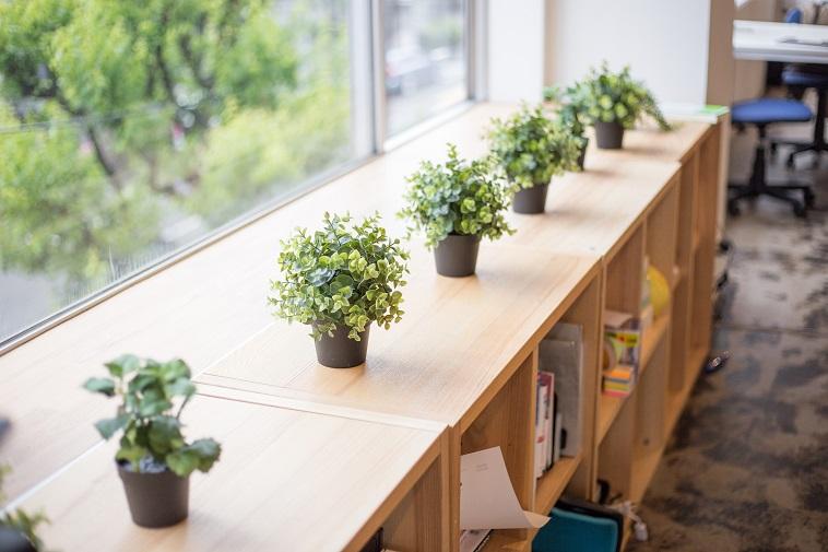 【写真】木製のロッカーの上には植物が置かれており、暖かい空気を作り出している