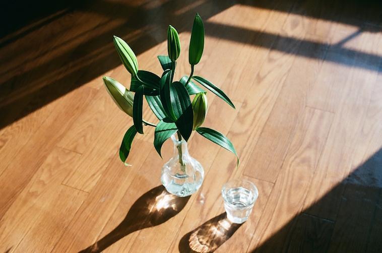 【写真】光が差した床には、葉がいけてある花瓶と、水の入ったコップがおかれている