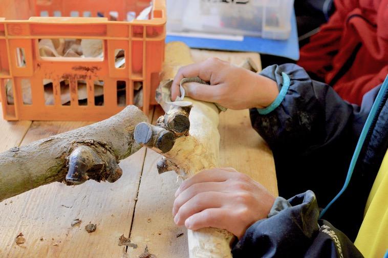 【写真】木をヤスリでツルツルに磨き上げる