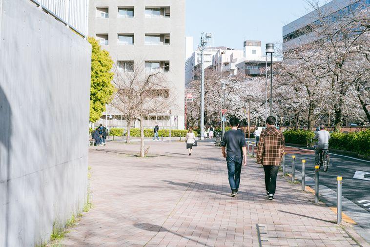 【写真】いまいさんとライターさとうが並んで桜並木の中を歩いている