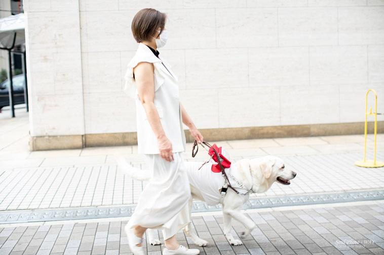【写真】盲導犬のヴィヴィッドと共に歩くあさいじゅんこさん